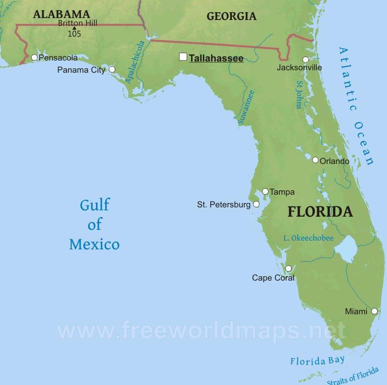 Intellectual Property Attorney Miami Florida